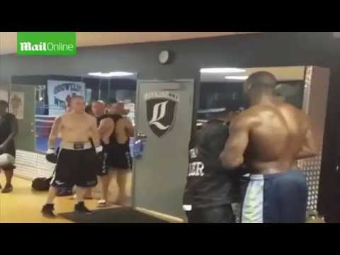 Deontay Wilder Knocks Out Internet Troll Charlie Zelenoff In Real Life