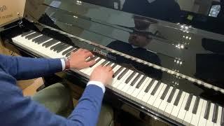 Liedermann Blanc vidéo