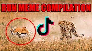 "★Top 10 TikTok ""Run Memes"" | AwolNation-Run Compilation | Run Meme Compilation ★"