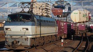 東海道本線 貨物撮影記 2017.1.30