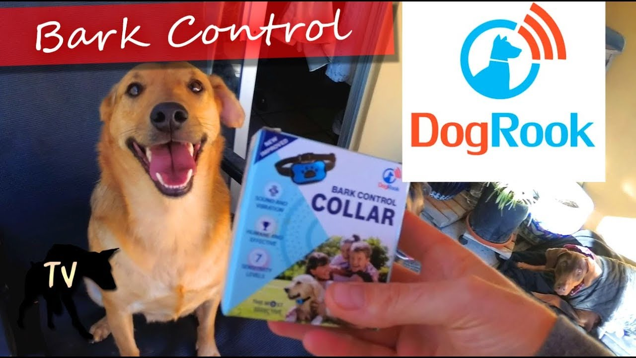 Dog Rook Bark Control Collar