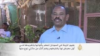 معرض لطيور الزينة يستهوي السودانيين