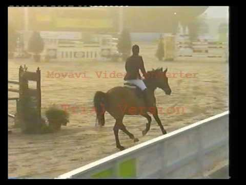 Suria - S-Level Jumping Darco Daughter