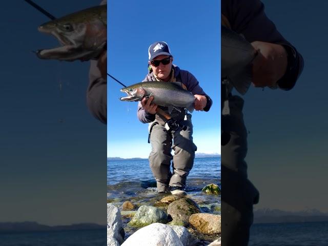 Pesca con mosca en el Nahuel Huapi