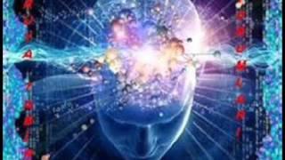 Rüyada Devekuşu Görmek Tabiri ve Yorumu