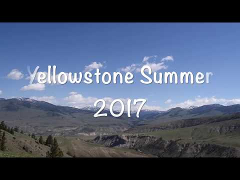 Working in Yellowstone