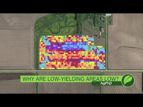 Why Are Low Yield Areas Low #1015 (Air Date 9-17-17)