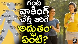 How 60 Minutes Of Walking A Day Can Change Your Life | Benefits Of Walking Everyday | Telugu Panda