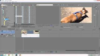 Speed up  slow down video in Sony Vegas Pro 13