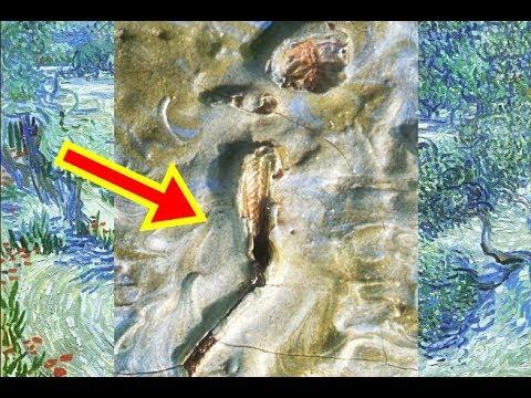 Grasshopper found in van Gogh painting at Kansas City museum