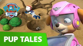 PAW Patrol | Pup Tales #37 | Rescue Episode