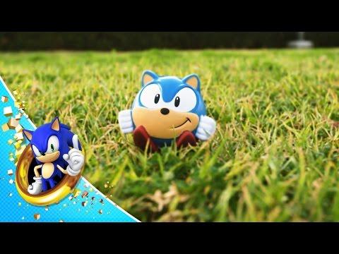 Blue Hedgehog Documentary: Hunter & Prey
