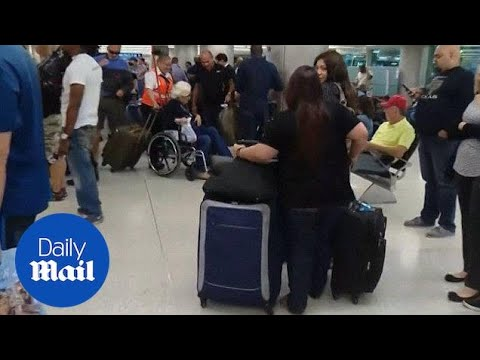 'It was insane!': Passengers wait hours to get through US customs - Daily Mail