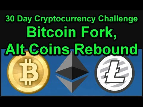 Bitcoin Fork, Alt Coins Rebound - 30 Day Cryptocurrency Challenge - Join Us! Day 5