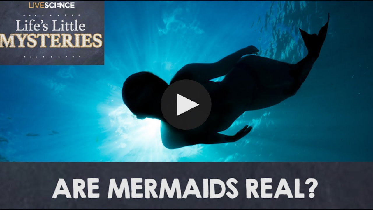 are mermaids real youtube