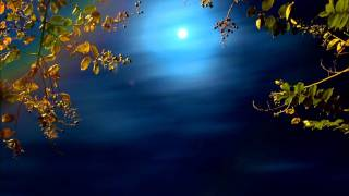 Song to the Moon from Rusalka by Dvorak. Sung in English by Yvonne Kenny