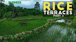 Rice Terraces Construction - Agribusiness Season 3 Episode 1