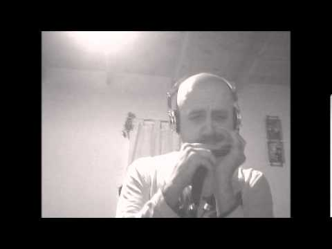 Have You Ever Seen The Rain - Creedence Clearwatte Revival - Armónica - Harmonica- TABS