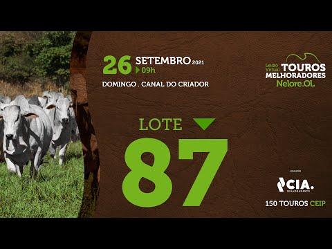 LOTE 87 - LEILÃO VIRTUAL DE TOUROS 2021 NELORE OL - CEIP