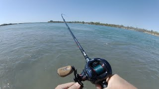 Рыбалка на реке Или в августе Ловим Жереха Сазана А АМУРЫ рвут снасти
