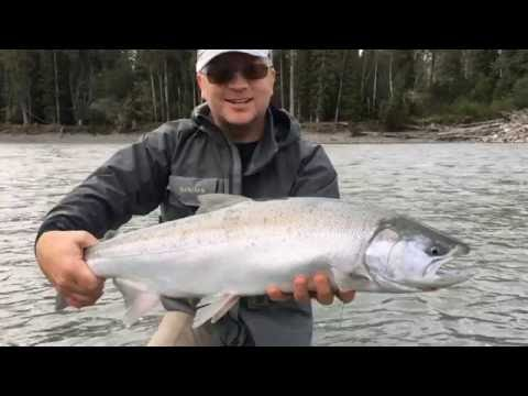 Coho Fishing In The Terrace And Kitimat Region