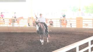 160409 shannon rafacz on heza banty rooster aqha ranch riding novice amateur