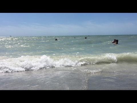 Beautiful sand key Park beach Florida Clearwater beach relaxing video