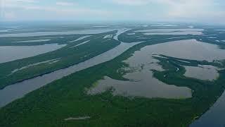 Амазонка - дивовижна ріка