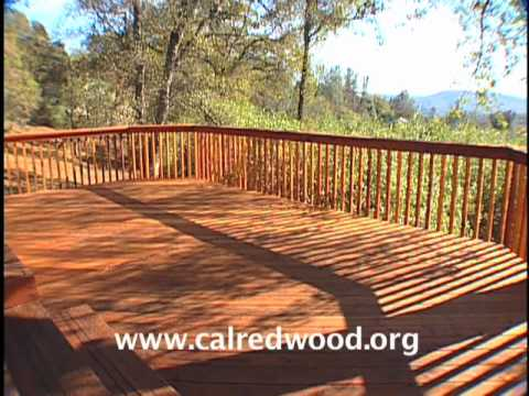 Redwood Maintenance | Humboldt Redwood