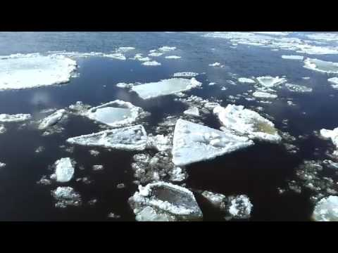 Ледоход на Северной Двине приближается к Архангельску