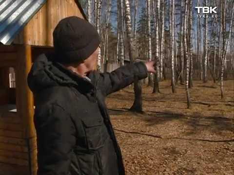 В Красноярске один участок земли для многодетных отдали двум разным семьям