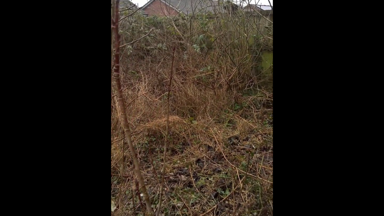 Bridgend garden clearance before and after 2017 - YouTube