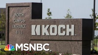 Exploring The Koch Brothers' Political Influence | Velshi & Ruhle | MSNBC