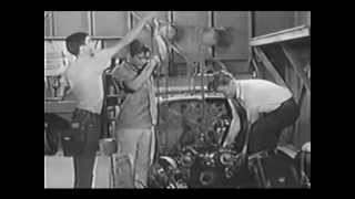 Life Of Rile - Juvenile Delinquent 1956