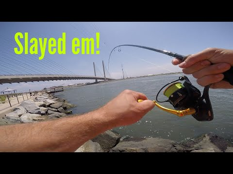 Jetty Fishing! Indian River Inlet, Delaware (Light Tackle)