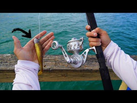 TARPON Fishing From PIER With Swimbaits