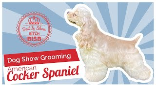 Dog Show Grooming: How to Groom an American Cocker Spaniel