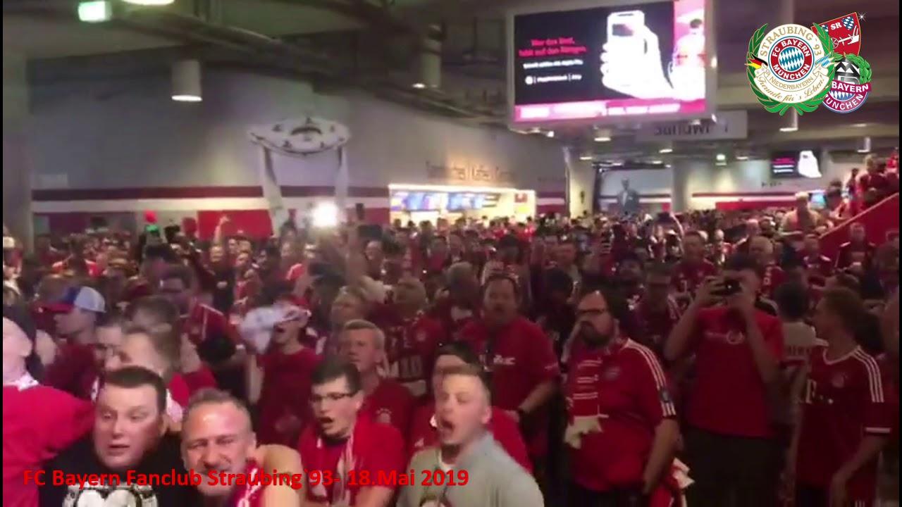Wettquote Bayern Meister