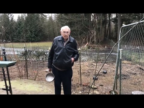 89 Year Old Grandpa Feeding Organic Chicken Feed