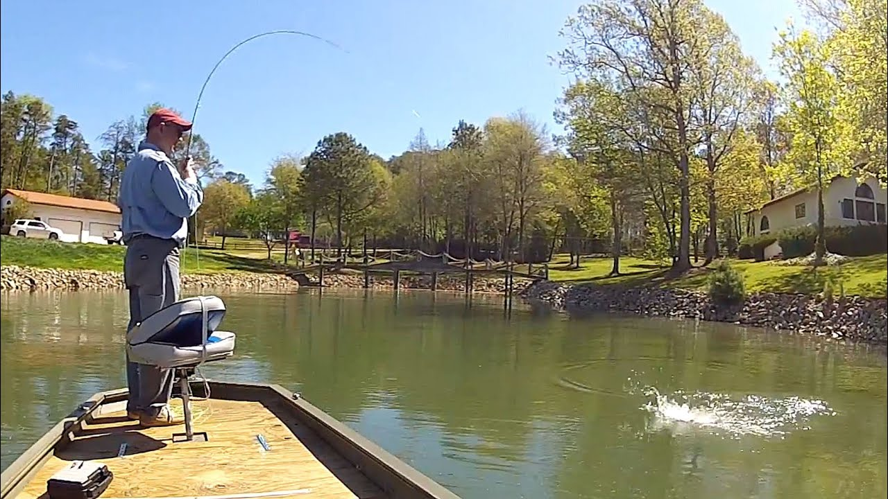 Streamer Fishing For Spotted Bass Lake Norman April
