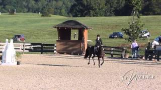 2012 American Eventing Championships - Elisa Wallace & Magically (Stadium Jumping)