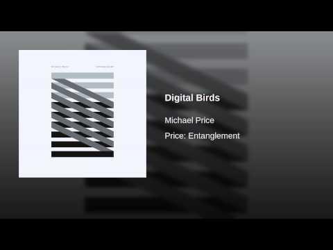 Digital Birds