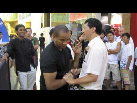 Ip Man Wing Chun singapore 2010