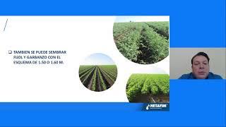 CURSO EN LINEA - Soluciones de riego para cultivo de granos