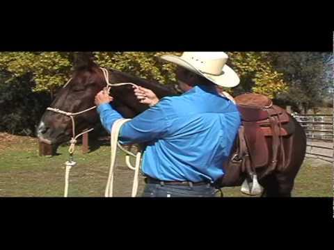 fiador knot rope halter instructions