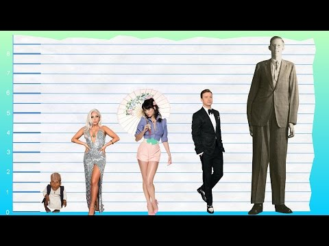 How Tall Is Lady Gaga Height Comparison Youtube