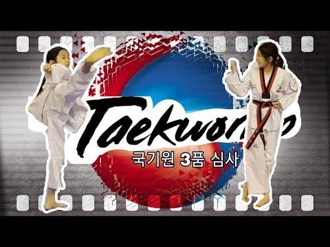 예진이의 태권도 국기원 3품 심사 도전!!/ 3rd Poom Taekwondo Promotion Test.
