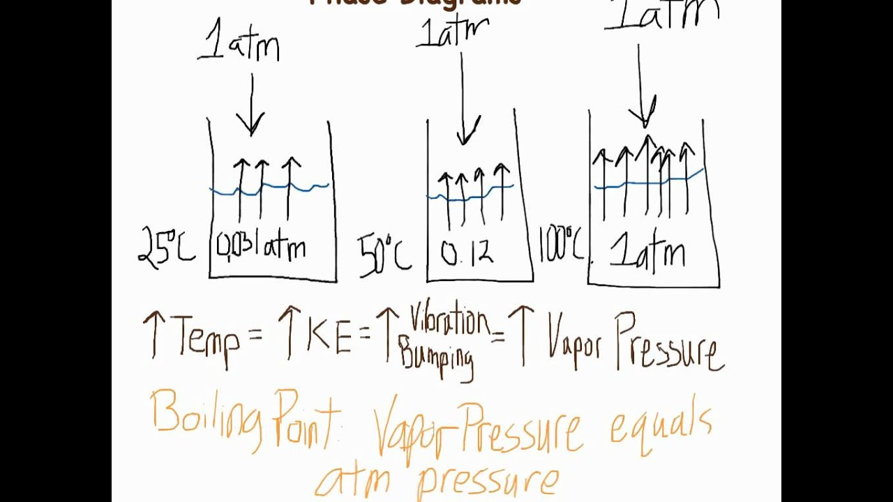 Vapor Pressure  U0026 Phase Diagrams