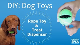 DIY Dog toys: Rope toy & treat dispenser!