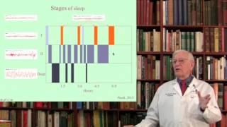 Lecture 9. Sleep Mechanisms